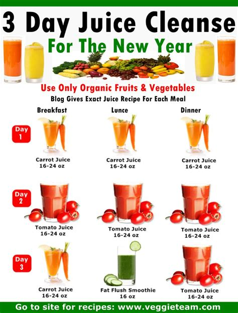 Boots 5 Day Detox by 37 Best Juicing Images On Smoothie Recipes