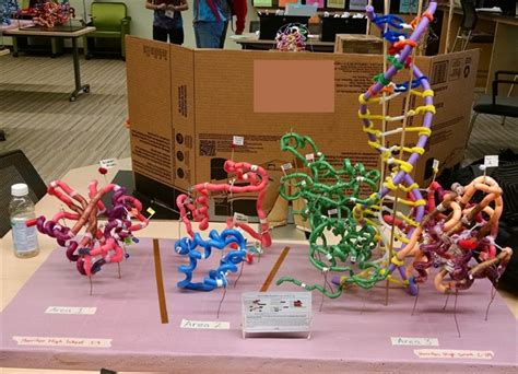 protein modeling science olympiad science olympiad protein modeling kits