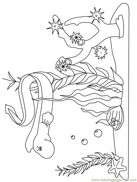 ocean coloring pages for preschool ocean coloring pages for preschoolers coloring home
