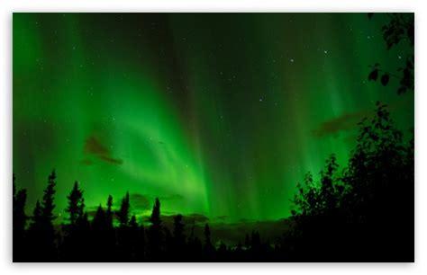 real northern lights  hd desktop wallpaper   ultra