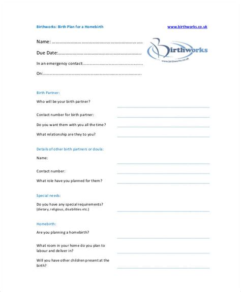 birth plan template 15 free word pdf documents