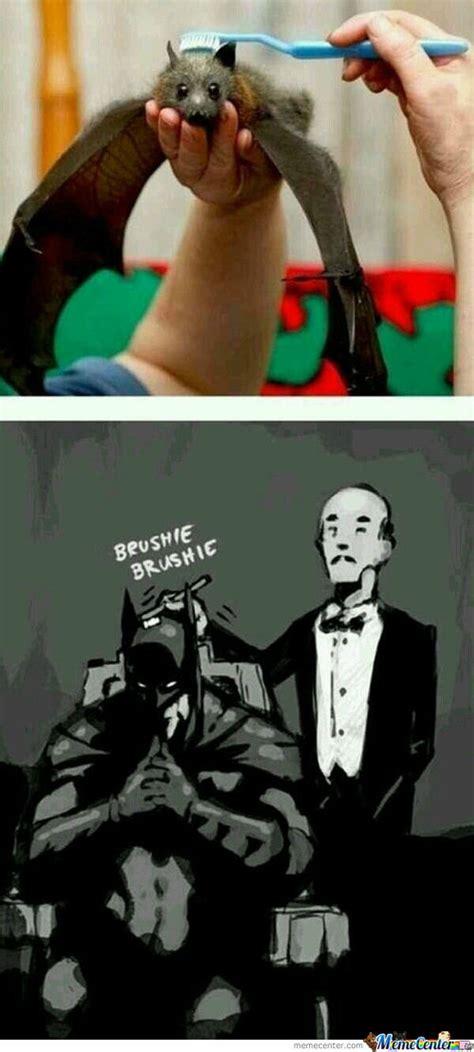 Bat Meme - bat pun memes best collection of funny bat pun pictures