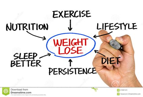 weight management u of m weight loss flowchart drawing on whiteboard stock