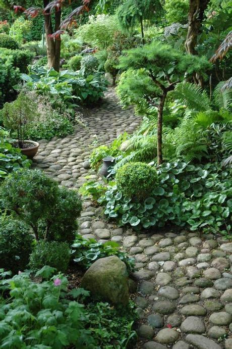 giardini in ombra giardini in ombra cosa mettere paperblog