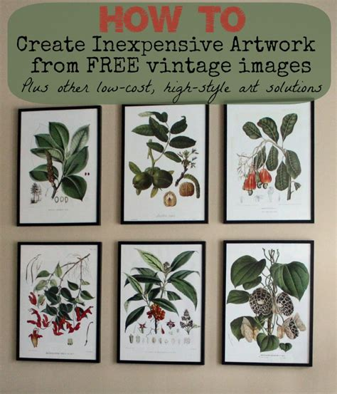 where to find inexpensive antique botanical prints