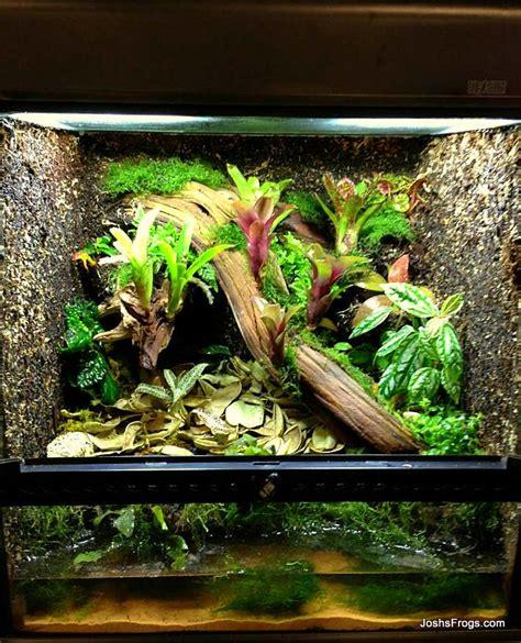 terrarium vivarium  habitat information joshs