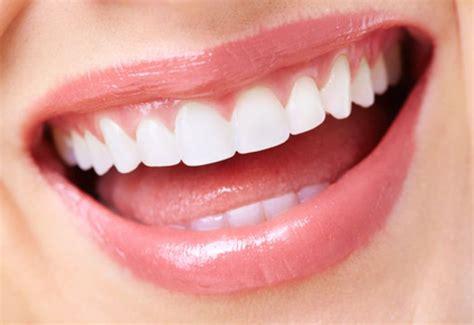 imagenes de varias bocas la boca sus partes y curiosidades el cofre de wilal