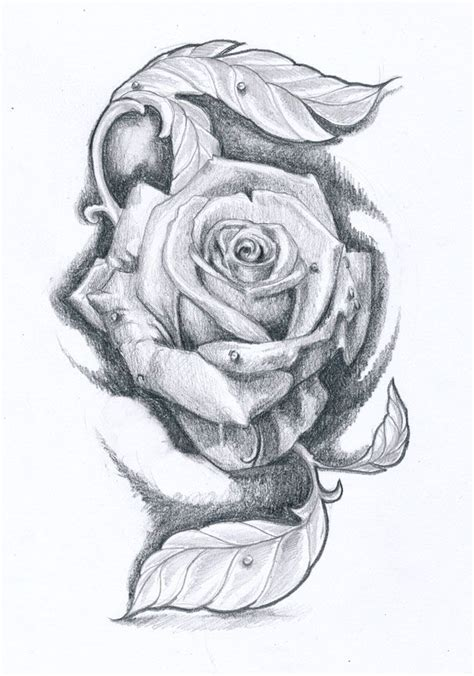 rose head tattoo designs 69 best images about reference on