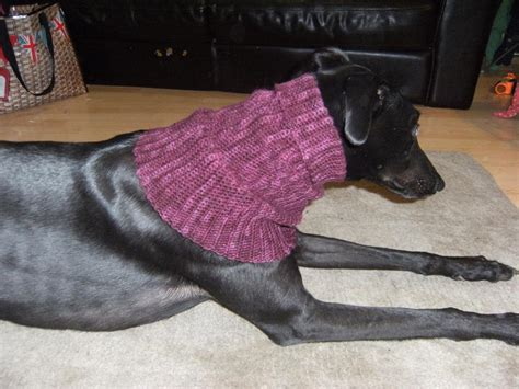 greyhound knitting pattern free greyhound snood crochet pattern by redclovercrochet