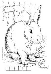 картинки раскраска животных онлайн
