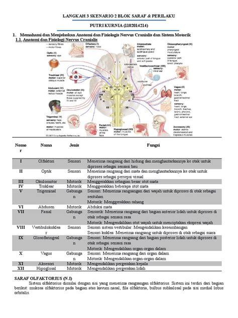 Mata Sk2 langkah 3 sk2 neuro docx
