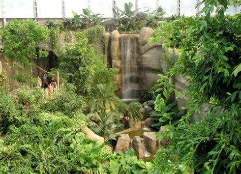 zoologischer garten läden blick der h 228 ngebr 252 cke 252 ber den fluss und oben in