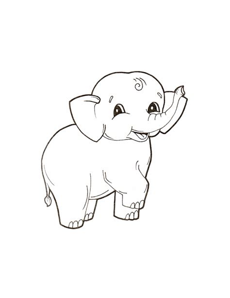 printable animal pictures for toddlers coloring pages animals coloring pages for babies animals