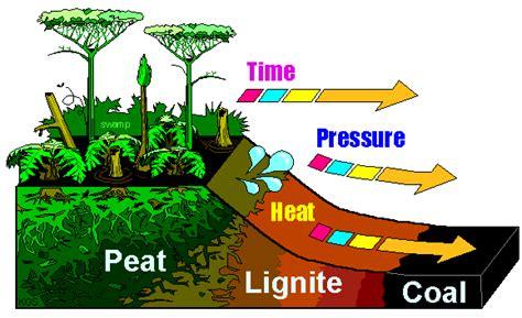 diagram of coal abhsscience c block coal