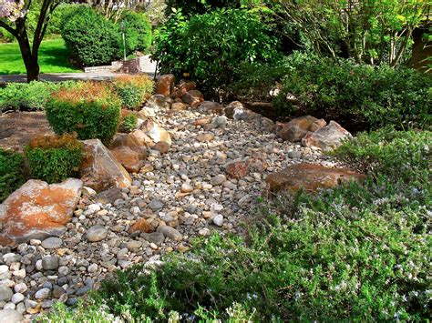Rock Garden Nursery Decorative Rocks And Plant Ideas Ideas Loversiq