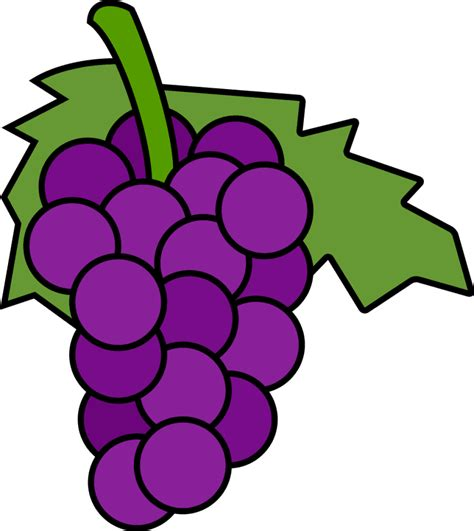 clipart uva clip image of fruit grape clipart best