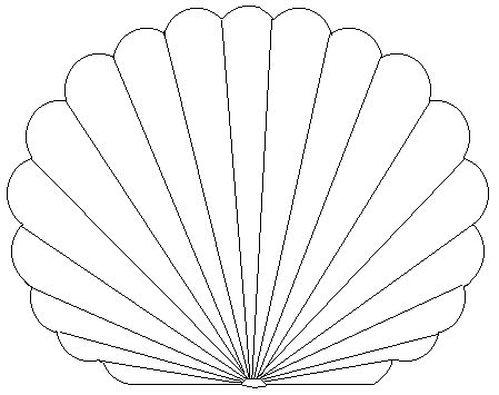 shell card template printable pictures of seashells free printable coloring