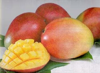 gets me mangoes books don t trust americans with mangoes musings from an