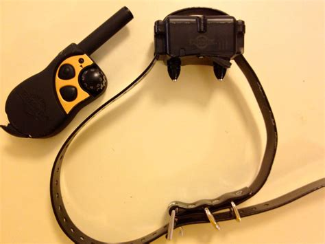how to your with shock collar information about shock collars eileenanddogseileenanddogs