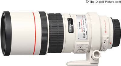 Canon Ef 300mm F 4 0 L Is Usm canon ef 300mm f 4l is usm lens review