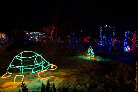 The Calgary Zoo In Calgary Alberta Zoolights Calgary Zoo Light