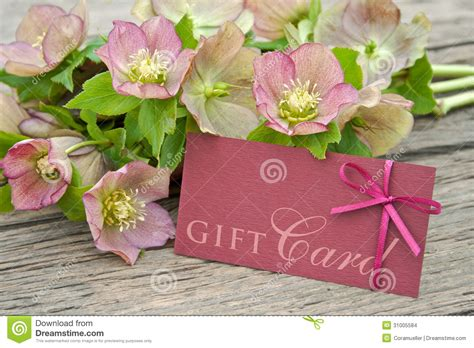 1800flowers Gift Card - gift card stock photo image of lettering brown spring 31005584