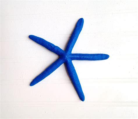 Starfish Wall Decor by Blue 6 Starfish Wall Decor Nautical Coastal