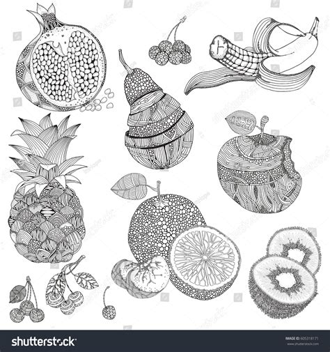 fruit zentangle set zentangle fruits berries black white stock vector