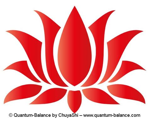 lotus flower chakra lotus flower