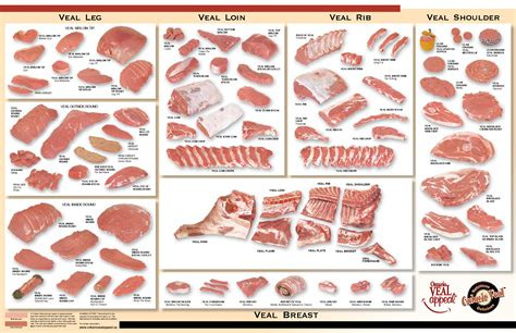 diagram of pork cuts of 7 best images of butcher chart printable pork