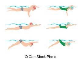 clipart nuoto nuoto rana illustrazioni e clipart 352 nuoto