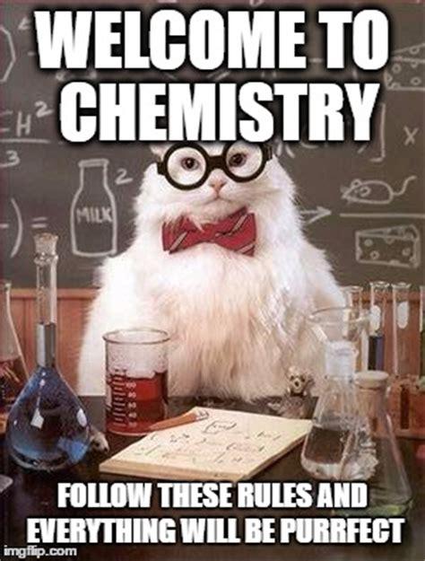 Chemistry Cat Meme Generator - chemistry cat imgflip
