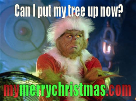when can i put up my tree the many memes of my merry