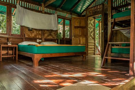 our jungle house our jungle house in khao sok an experience like no other