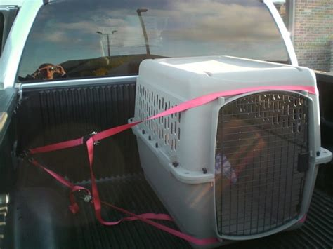 truck bed kennel pics of dog kennels in your screw f150 page 3 ford