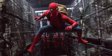 spider man 2017 film wiki spider man comes home to mcu in fun filled action