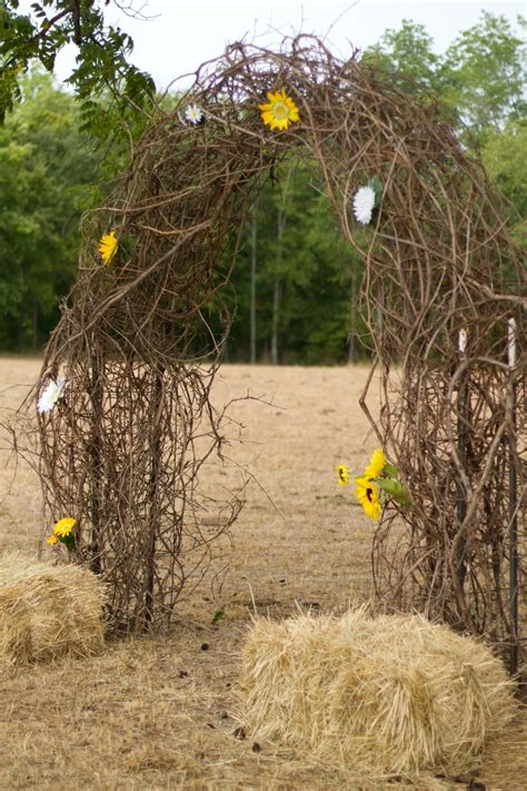 Wedding Arch Made Of Sticks by Rustic Wedding Arch Made Out Of Grape Vine Wedding