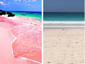 pink sand beach bermuda pink sand resort pictures to pin on pinterest