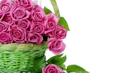 wallpaper flower full size beautiful flower wallpaper for desktop 3d free download