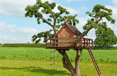 Treehouse For Backyard by Build A Treehouse With Your Pioneer