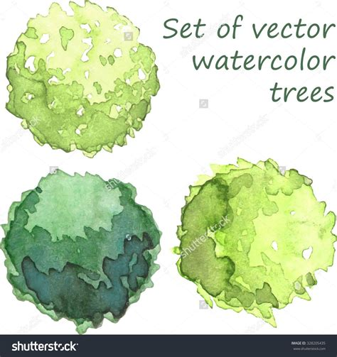 water color tree watercolor trees plan view rendering watercolor