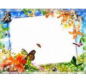 Frames PNG Fundo Transparente Praia E Flores  Central Photoshop