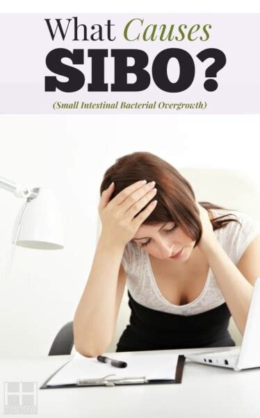 Sibo Stool Detox by Treating Sibo Part 3 Causes Of Sibo Homestead