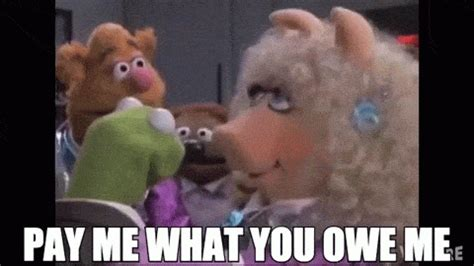 Pay Me My Money Meme - 10 datos curiosos sobre el d 239 a de la hispanidad