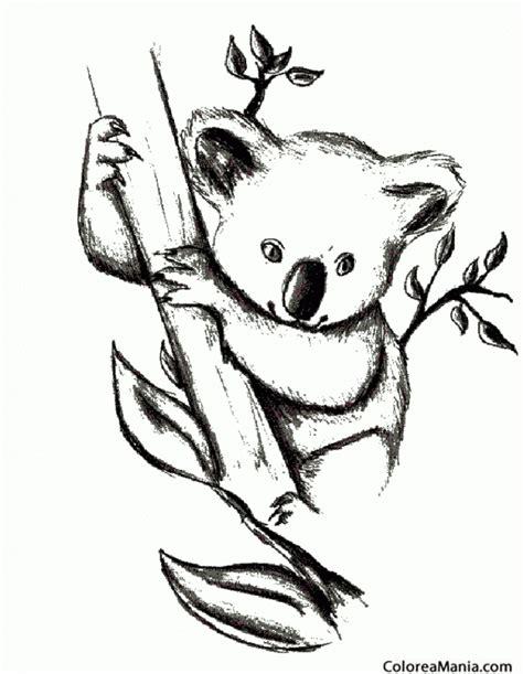 dibujos para colorear koala colorear koala al lapiz animales del bosque dibujo para