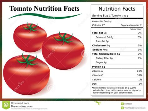 carbohydrates tomatoes tomato nutrition facts stock vector illustration of