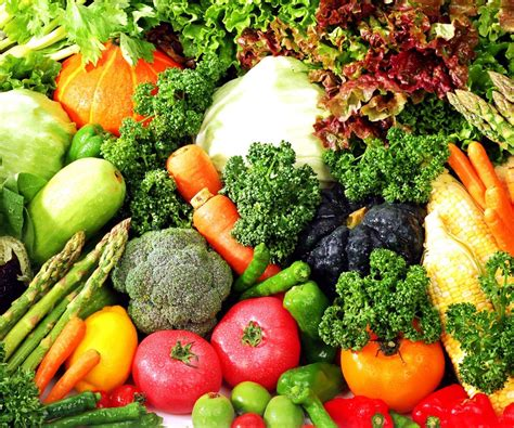 vegetables only diet riveting vegetable only diet new health guide plus can