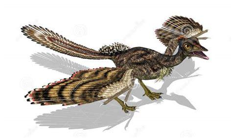 film punahnya dinosaurus apakah dinosaurus berevolusi menjadi burung ini