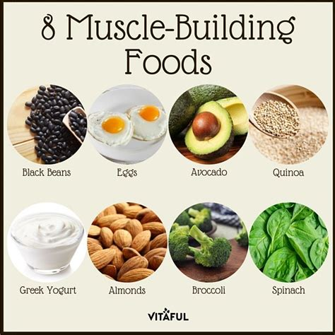 8 Food Facts by 8 Building Foods Protein Health Food Facts