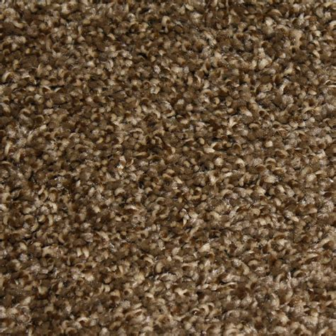home decorators carpet home decorators collection carpet sle shackelford i color inspiration texture 8 in x 8